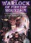 The Warlock of Firetop Mountain by Steve Jackson and Ian Livingstone