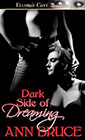 Dark Side of Dreaming by Ann Bruce
