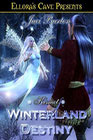 Winterland Destiny by Jaci Burton