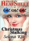 Christmas Stalking by Selena Kitt