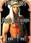 Love Fool by Anna J Evans