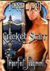Imperfect Judgment by Cricket Starr